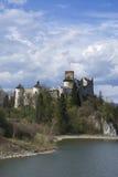 Slott i Nidzica Arkivbild