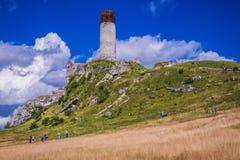 Slott i Olsztyn, Silesia region royaltyfri foto