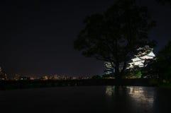 Slott i Osaka vid natt Royaltyfri Fotografi