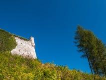 Slott i Pieskowa Skala Arkivbilder