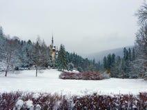 Slott i skogen i snön royaltyfri bild