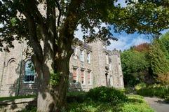 Slott i skuggan arkivbilder