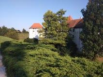Slott i stad för VaraÅ ¾buller royaltyfri fotografi
