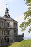 Slott i Ukraina Arkivfoto