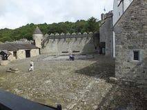 Slott Irland för Parke ` s arkivfoto