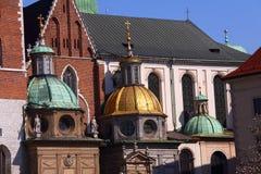 slott krakow poland Royaltyfria Foton