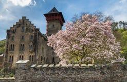 Slott Liebieg Gondorf på Mosellen Fotografering för Bildbyråer