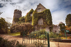Slott nära Dublin vid höst Royaltyfri Foto