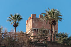 Slott och palmträd Royaltyfri Foto