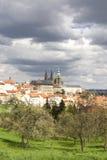 slott prague fotografering för bildbyråer
