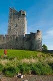 slott ross Arkivfoton