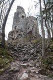 Slott STARY HRAD, Slovakien Royaltyfria Foton