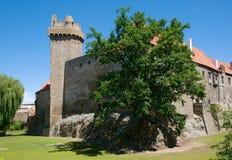 Slott Strakonice, Tjeckien Royaltyfri Fotografi