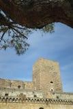 Slott Svevo av Bari Royaltyfri Foto