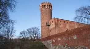 slott teutonic medeltida poland Royaltyfri Bild