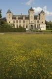 Slott Tillegem nära Bruges Arkivbild