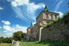 slott västra ukraine arkivbild
