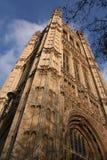 slott westminster Royaltyfri Foto