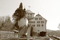 Slott Wildegg, Schweiz Royaltyfria Foton