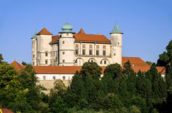 Slott Zamek i Wisnicz, Polen Royaltyfri Fotografi