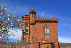 slottdc-landmark smithsonian washington royaltyfri bild