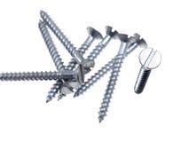 Slotted flat head screws. Stock Photos