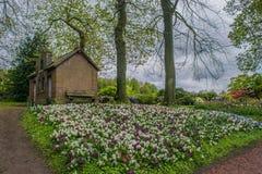 Slotten av Groot-Bijgaarden - trädgårdar Royaltyfri Foto