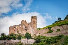 Slotten fördärvar Ehrenfels i Assmannshausen på rhinen royaltyfria bilder