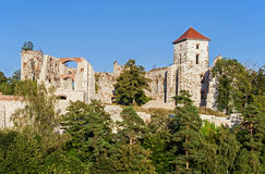 Slotten fördärvar i Tenczynek, Polen arkivbild