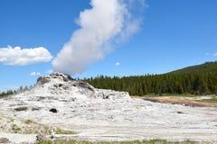 Slottgeyser Yellowstone Royaltyfri Bild