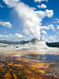 slottgeysernationalpark wyoming yellowstone Arkivfoto