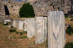 slottkos fördärvar townen Arkivbild