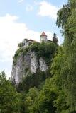 slottrock Royaltyfri Bild