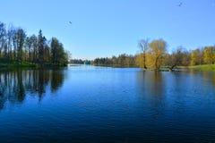 Slottträdgård och sjö Beloe Gatchina St Petersburg, Ryssland Arkivbild