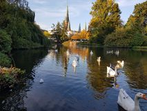 Slottträdgård sjö i Oldenburg arkivfoto