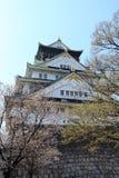 Slottvägg av den Osaka staden, Japan Arkivfoto