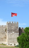 Slottvägg som lokaliseras i Ephesus royaltyfri foto