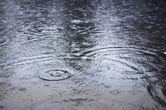 Slough και raindropp Στοκ Φωτογραφία