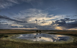 Slough pond and crop Stock Photography