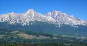 Slovak High Tatras in summer Royalty Free Stock Image