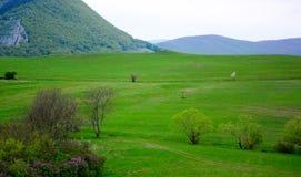Slovak Karst hills, Slovakia. Grass meadow in valley in Slovak Karst, Slovakia royalty free stock photos