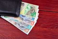 Slovak money in the black wallet Stock Images