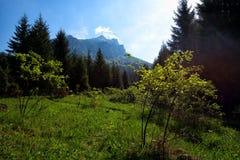 Slovak mountains. Hiking to Rozsutec in Mala Fatra Stock Image