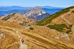Slovak mountains trekking path in Mala Fatra Royalty Free Stock Images