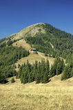 Slovak mountains. View of summer landscape Slovak mountains Royalty Free Stock Image