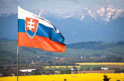 Slovak national flag. In wind royalty free stock photos