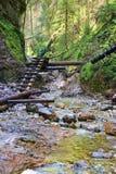 Slovak Paradise. Lovely walk over Slovak Paradise royalty free stock image