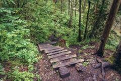 Slovak Paradise mountain range. Marked trail along Hornad River in famous national park called Slovak Paradise, Slovakia royalty free stock photo