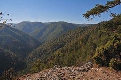 Slovak Paradise National Park. Beautiful forest of the Slovak Paradise in Slovakia royalty free stock photos