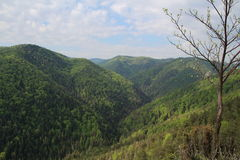 Slovak Paradise National park, Slovakia. Slovak Paradise National park in Slovakia stock images